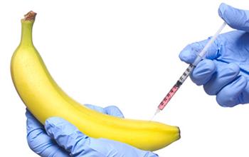 увеличение пениса без операции