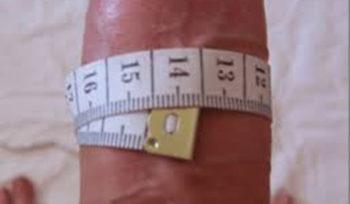 как измерить размер полового члена