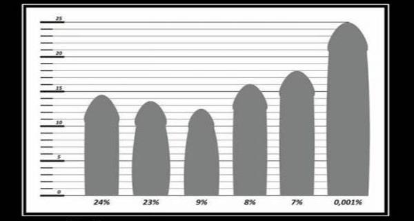 какой размер члена должен быть у мужчины