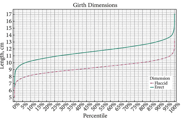 шкала размеров члена